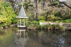 Duck Pond chez Wellington Botanical fait du jardinage le Nouvelle-Zélande photo libre de droits