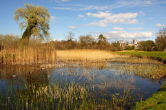 Duck pond by a scenic ancient castle in ireland Royalty Free Stock Photo