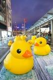 Duck Project di gomma in Hong Kong immagine stock libera da diritti