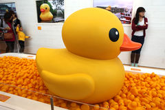 Duck Project en caoutchouc en Hong Kong Images libres de droits