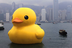 Duck Project en caoutchouc en Hong Kong Images stock