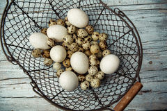 Duck and Quail Eggs Royalty Free Stock Photography