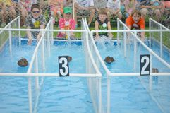 Duck Races na feira imagens de stock royalty free