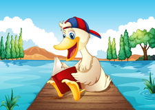 A duck reading a book at the port Royalty Free Stock Photos