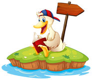 A duck reading beside the empty arrowboard Royalty Free Stock Photography