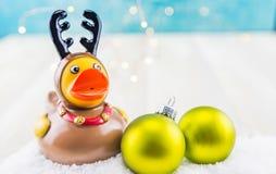Duck Reindeer en caoutchouc avec deux ornements verts Photos stock
