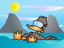 Duck relax Stock Photo