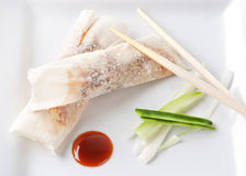 Duck rolls with hoisin sauce. Crispy Duck rolls with Hoisin sauce and spring onions royalty free stock photography