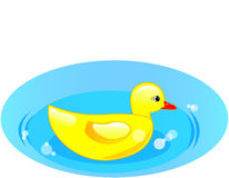 Duck. Rubber duck in blue water on white background Royalty Free Stock Photo