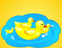 Duck. Rubber duck in blue water on yellow background Stock Image