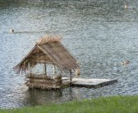 Duck's house. In the pond Royalty Free Stock Photo