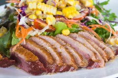 Duck Salad Royaltyfria Bilder
