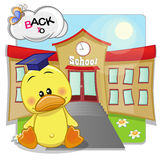 Duck and school Royalty Free Stock Photos