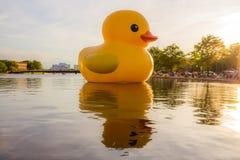 Duck Sculpture de borracha gigante em Norfolk, Virgínia fotografia de stock royalty free