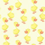 Duck seamless pattern Stock Image