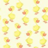 Duck seamless pattern Stock Image