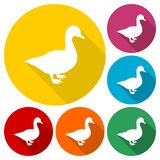 Duck silhouette icons set with long shadow. Vector icon Royalty Free Stock Images