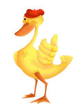 Duck smiling. Color illustration of a cute and smiling duck, that with a 'wing gets ok Royalty Free Stock Image