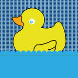 Duck. Special duck toy on abstract bathroom background Stock Image