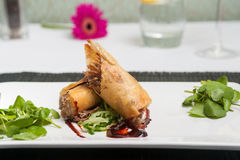 Duck spring rolls Royalty Free Stock Photo