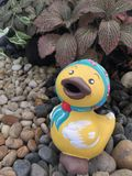 Duck statue for decoration Stock Image