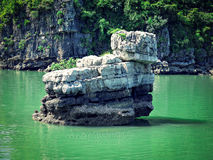 Duck Stone bij Ha snakt Baai Royalty-vrije Stock Foto's