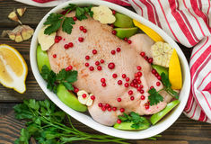 Duck stuffed with apples and cabbage ready for cooking with cranberries, lemon and spices. In white ceramic form. Selective focus Stock Images