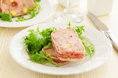 Duck terrine with pistachios. And cherries Stock Images