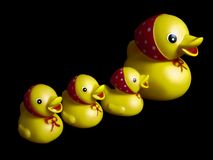 Free Duck Toy Stock Photography - 10725482