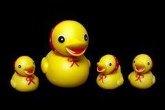Free Duck Toy Stock Photos - 10817033