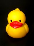 Duck toy 12 Royalty Free Stock Photo