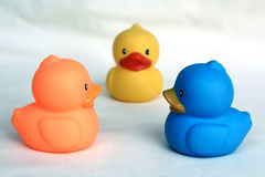 Duck toy Stock Images
