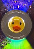 Duck the Toy Royalty Free Stock Image
