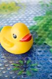 Duck toy for baby bath Royalty Free Stock Photography