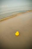 Duck Toy On Beach Fotografía de archivo libre de regalías