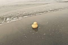 Duck Toy On Beach Imagenes de archivo