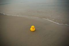 Duck Toy On Beach Stock Photo