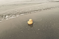 Duck Toy On Beach Stock Images