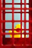Duck toy behind the prison. Yellow duck toy behind the red prison Stock Photography