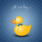Duck toy for boy Royalty Free Stock Photography