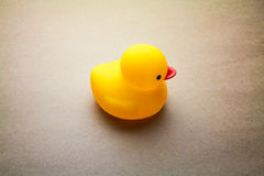 Duck toy Stock Image