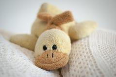Duck toy Stock Photo