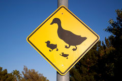 Duck traffic sign Royalty Free Stock Photos