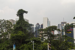 Duck tree with Kuala Lumpur skyline Royalty Free Stock Photo