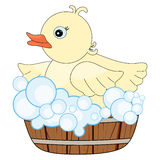 Duck in tub pattern Royalty Free Stock Images
