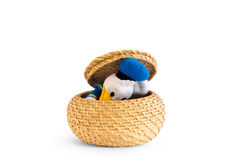 Duck that is ucendo from a straw basket Royalty Free Stock Photos