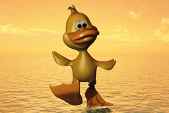 Free Duck Walking On Water Stock Photography - 6829892