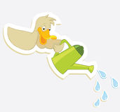 Duck and watering can Stock Photography