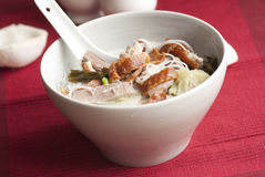 Duck With Noodles Stock Photo