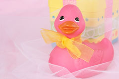 Duck With Present Stock Photography